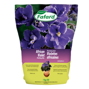 Potting Mix African Violet