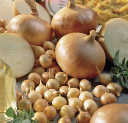 Onion Sets pkg of 80