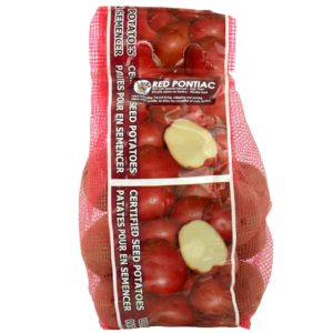 Seed Potato Red Pontiac