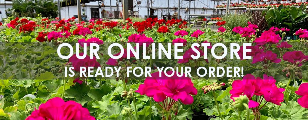 Store Banner Shop Open