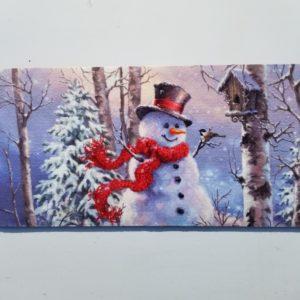 SNOWMAN SWITCH MAT