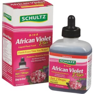 FERTILIZER AFRICAN VIOLET