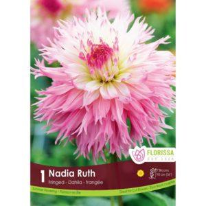 DAHLIA FRINGED Nadia Ruth