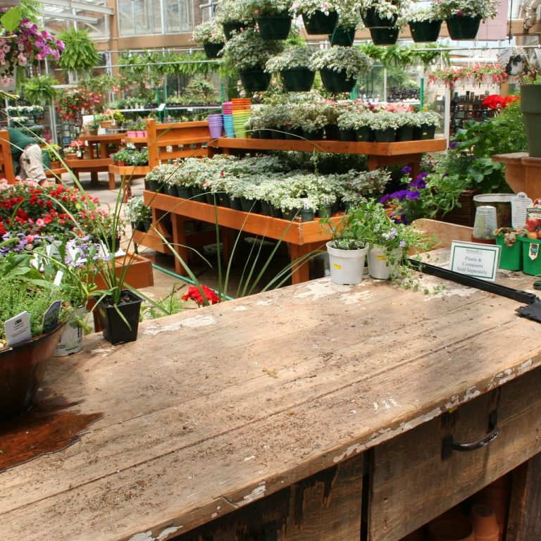 Garden Centre Associate