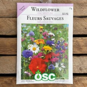 OSC WILDFLOWER SEEDS – LARGE