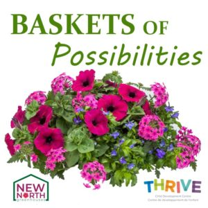 BASKETS OF POSSIBILITIES –  KNIGHT POMPEII