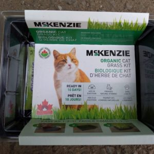 CAT GRASS KIT – Organic