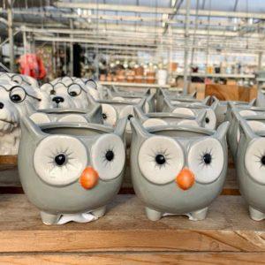 POT – GREY OWL