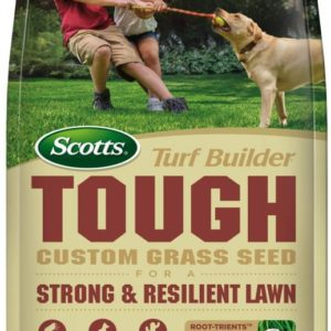 TURFBUILDER® GRASS SEED – TOUGH