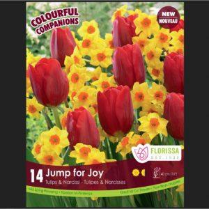 COMPANION JUMP FOR JOY PKG 12